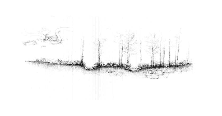 Art piece by Chenglin Zhu, MLA 2019. Black and white sketch of landscape.
