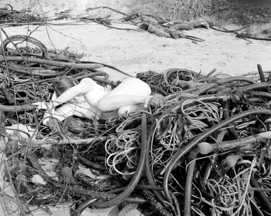 Student work by Margaret Kristensen MFA 2017. Photograph of nude woman at a beach, lying on top of a pile of washed up ribbon kelp.